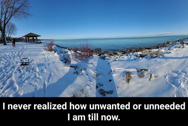 I never realized how unwanted or unneeded am till now. I never realized how unwanted or unneeded I am till now memes