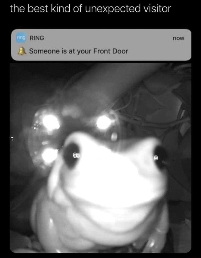 The best kind of unexpected visitor RING Someone is at your Front Door memes