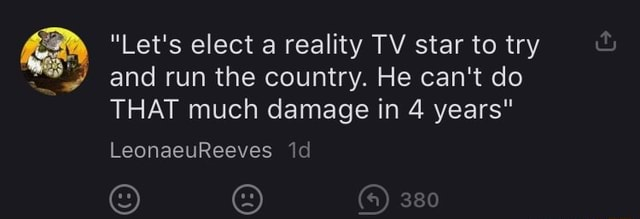 Let's elect a reality TV star to try and run the country. He can not do THAT much damage in 4 years 380 LeonaeuReeves memes