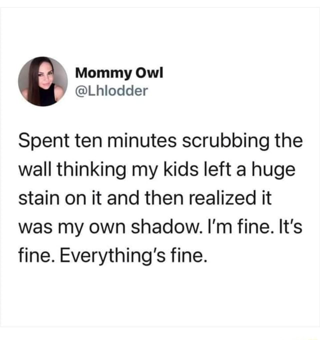 Spent ten minutes scrubbing the wall thinking my kids left a huge stain on it and then realized it was my own shadow. I'm fine. It's fine. Everything's fine meme