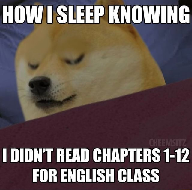 HOW SLEEP KNOWING DIDN'T READ CHAPTERS 1 12 FOR ENGLISH CLASS memes