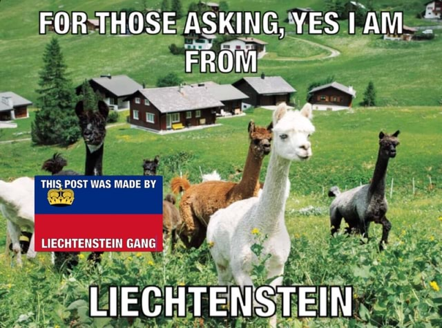 FOR THOSE ASKING, YES FROM THIS POST WAS MADE BY LIECHTENSTEIN GANG LIECHTENSTEIN memes