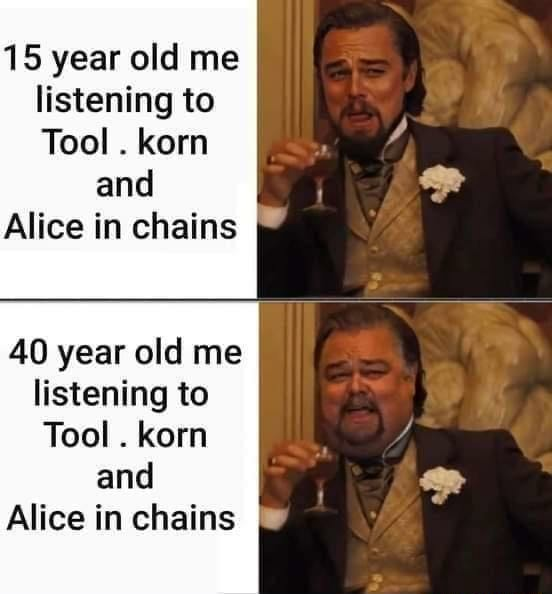 15 year old me listening to Tool. kern and Alice in chains 40 year old me listening to Tool. korn and Alice in chains meme