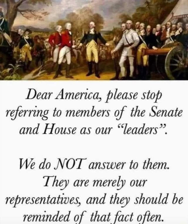 Dear America, please stop referring to members of the Senate and House as our leaders. We do NOT answer to them. They are merely our representatwes, and they should be reminded of that fact often memes