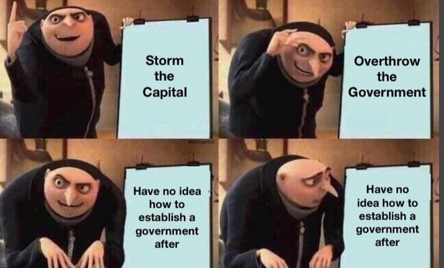 Storm the Capital Have no idea how to establish a government after Overthrow the Government Have no idea how to establish a government after memes