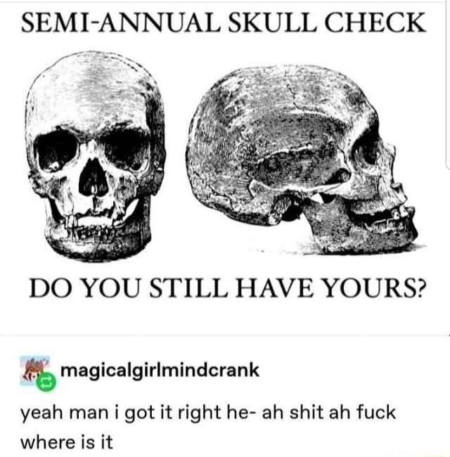 SEMI ANNUAL SKULL CHECK si DO YOU STILL HAVE YOURS and magicalgirlmindcrank yeah man i got it right he ah shit ah fuck where is it memes