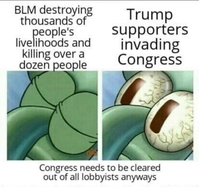 BLM destroying thousands of Trump people's supporters live hoods and invading illing over a dozen people Congress Congress needs to be cleared out of all lobbyists anyways memes