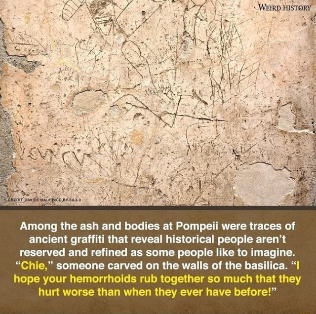 Among the ash and bodies at Pompeii were traces of ancient graffiti that reveal historical people aren't reserved and refined as some people like to imagine. Chie, someone carved on the walls of the basilica. I hope your hemorrhoids rub together so much that they hurt worse than when they ever have before memes