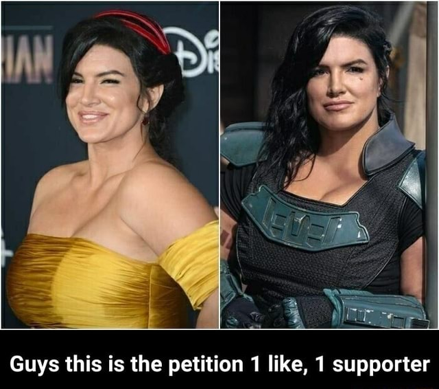 Guys this is the petiti Guys this is the on like, 1 supporter Guys this is the petition 1 like, 1 supporter meme