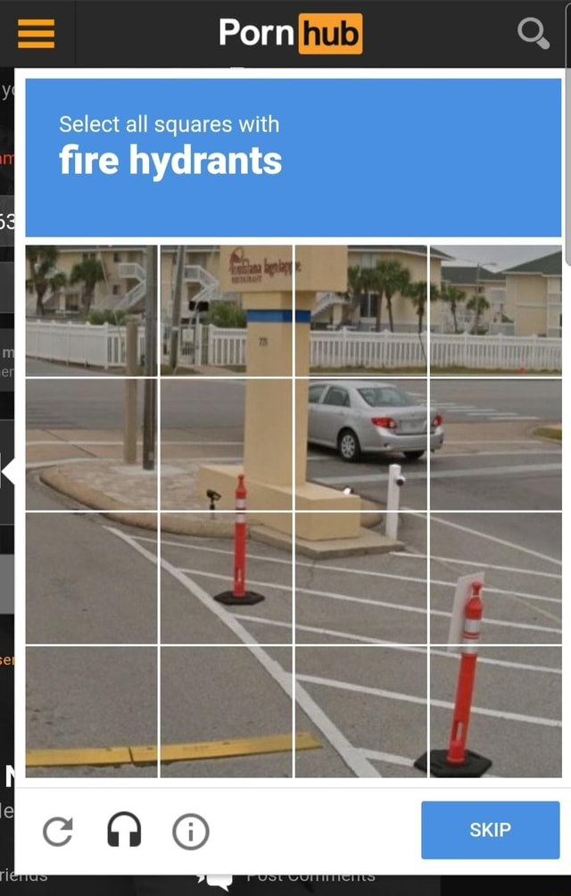 Porn Select all squares with fire hydrants I le SKIP meme