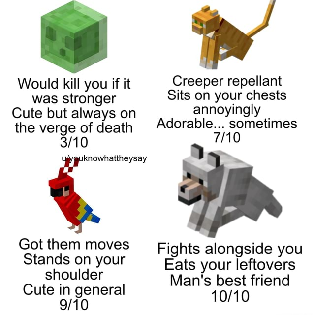Would kill you if it Creeper repellant was stronger Sits on your chests Cute but always on annoyingly the verge of death Adorable. sometimes Got them moves Fights alongside you Stands on your Eats your Man's leftovers best friend shoulder Man's best friend Cute in general memes