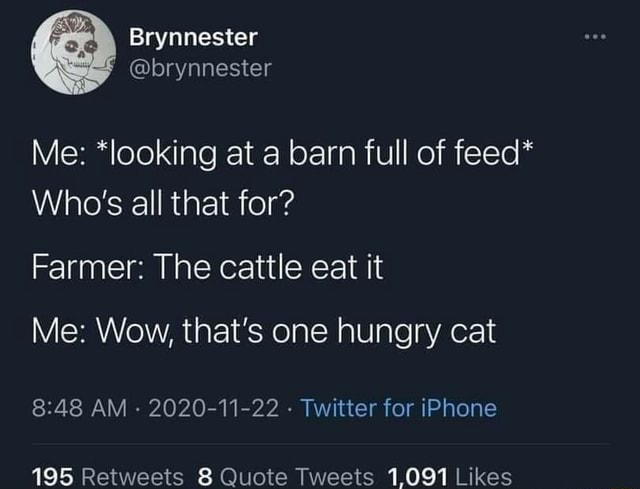 Brynnester brynnester Me *looking at a barn full of feed* Who's all that for Farmer The cattle eat it Me Wow, that's one hungry cat AM 2020 11 22 Twitter for iPhone memes