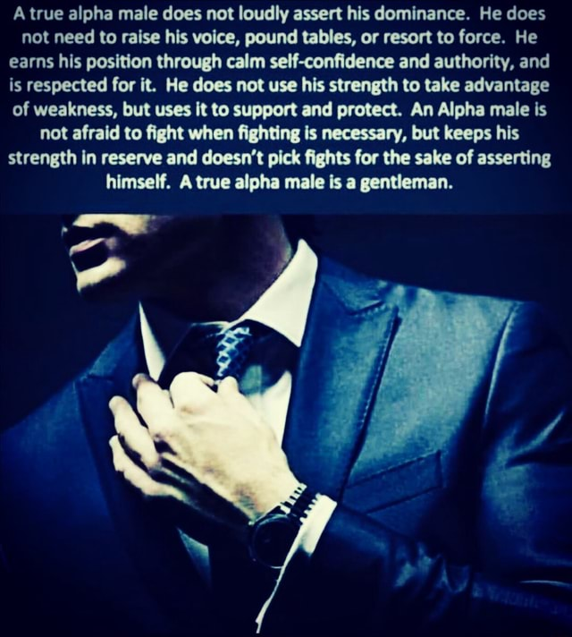 A true alpha male does not loudly assert his dominance. He does not need to raise his voice, pound tables, or resort to force. He earns his position through calm self confidence and authority, and is respected for it. He does not use his strength to take advantage of weakness, but uses it to support and protect. An Alpha male is not afraid to fight when fighting is necessary, but keeps his strength in reserve and doesn't pick fights for the sake of asserting himself. A true alpha male is a gentleman memes