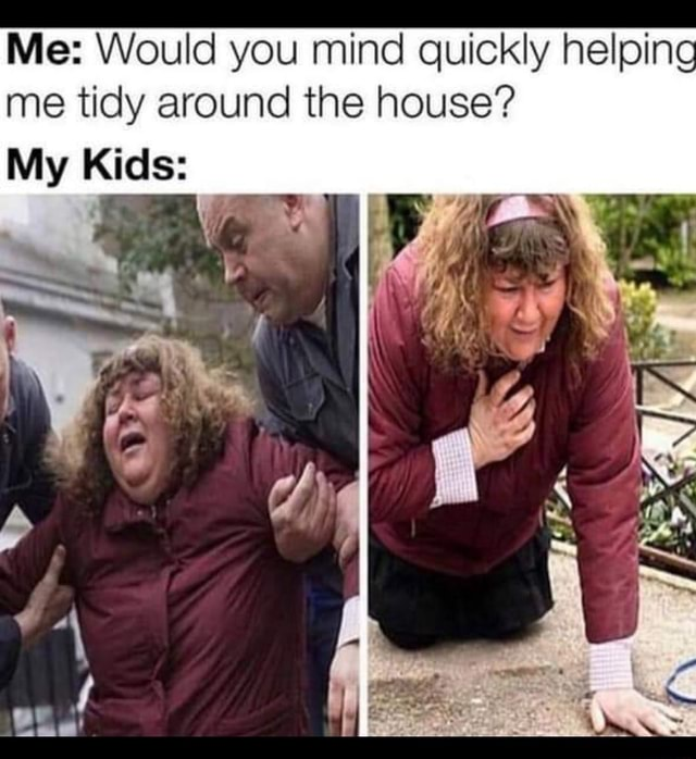 Me Would you mind quickly helping me tidy around the house Ss ff My Kids meme