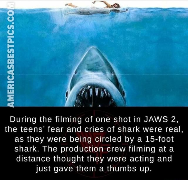 AMERICASBESTPICS.CO During the filming of one shot in JAWS 2, the teens fear and cries of shark were real, as they were being circled by a 15 foot shark. The production crew filming at a distance thought they were acting and just gave them a thumbs up memes