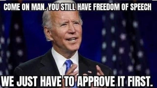 COME ON MAN. YOU STILL HAVE FREEDOM OF SPEECH WE JUST HAVE 10 APPROVE IT FIRST meme