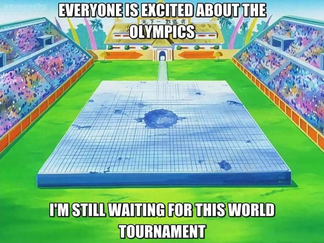 EVERYONE IS EXCITED ABOUT THE OLYMPICS I'M STILL WAITING FOR THIS WORLD TOURNAMENT memes
