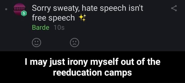 Sorry sweaty, hate speech isn't free speech Barde may just irony myself out of the reeducation camps I may just irony myself out of the reeducation camps meme