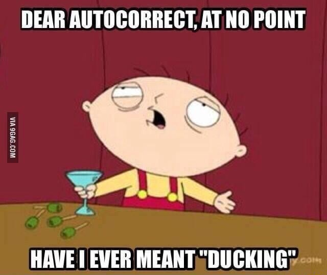 DEAR CORRECT AT NO POINT HAVE EVER MEANT DUCKING memes