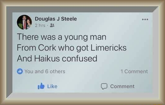 Douglas J Steele There was a young man From Cork who got Limericks And Haikus confused You and 6 others Comment 18 Like comment memes