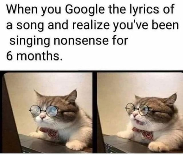 When you Google the lyrics of a song and realize you've been Singing nonsense for months memes