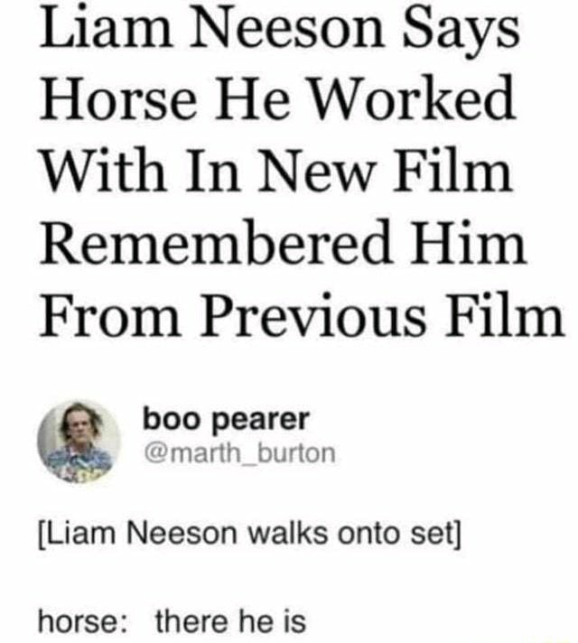 Liam Neeson Says Horse He Worked With In New Film Remembered Him From Previous Film boo pearer burton Liam Neeson walks onto set horse there he is memes