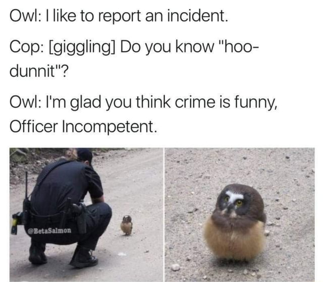 Owl I like to report an incident. Cop giggling Do you know hoo dunnit Owl I'm glad you think crime is funny, Officer Incompetent meme