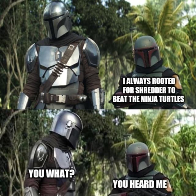 YOU WHAT TALWAYS ROOTED FOR SHREDDER TO BEAT THE NIHJA TURTLES YOU HEARD ME memes