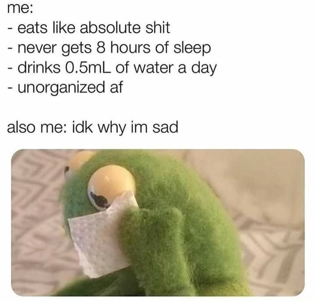 Me eats like absolute shit never gets 8 hours of sleep drinks 0.5mL of water a day unorganized af also me idk why im sad memes
