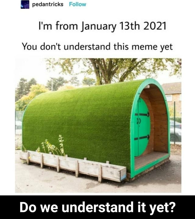 Pedantricks Follow I'm from January 13th 2021 You do not understand this meme yet ant a Do we understand it yet Do we understand it yet