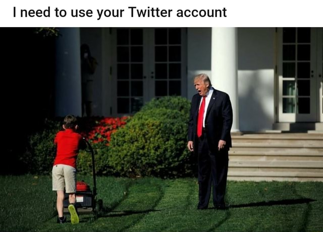 I need to use your Twitter account meme