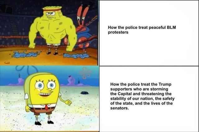 How the police treat peaceful BLM protesters How the police treat the Trump supporters who are storming the Capital and threatening the stability of our nation, the safety of the state, and the lives of the senators memes