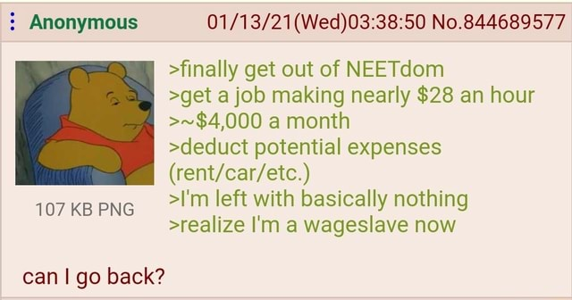 Anonymous No.844689577 finally get out of NEETdom get a job making nearly $28 an hour  $4,000 a month deduct potential expenses I'm left with basically nothing realize I'm a wageslave now 107 KB PNG can I go back memes