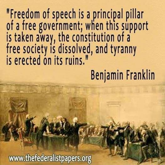 Freedom of speech is a principal pillar of a free government when this support is taken away, the constitution of a free society dissolved, and tyranny is erected on its ruins. wi Benjamin Franklin memes