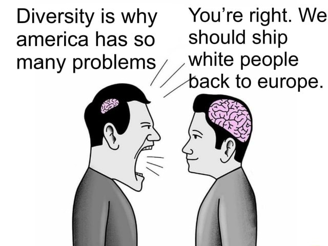 Diversity is why You're right. We america has so should ship many problems, white people back to europe meme