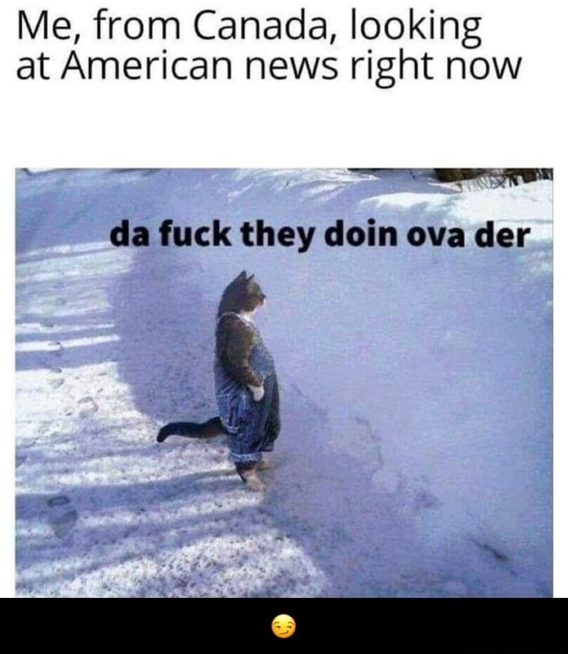 Me, from Canada, looking at American news right now Se da fuck they doin ova der  memes