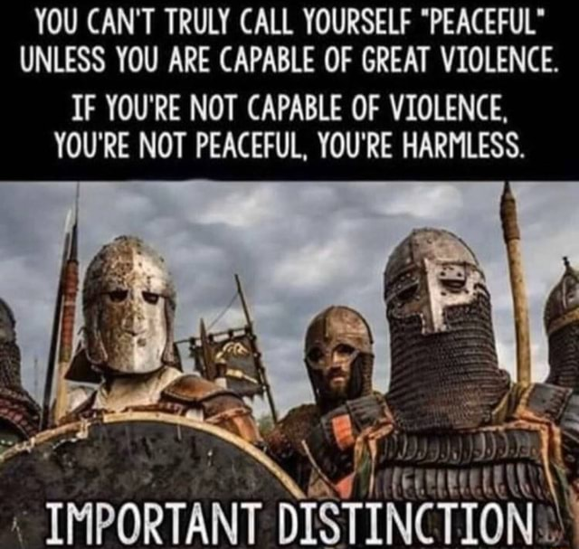 YOU CAN'T TRULY CALL YOURSELF PEACEFUL UNLESS YOU ARE CAPABLE OF GREAT VIOLENCE. IF YOU'RE NOT CAPABLE OF VIOLENCE, YOU'RE NOT PEACEFUL, YOU'RE HARMLESS. Ay IMPORTANT DISTINCTION memes