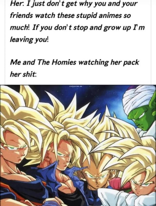 Her. I just do not get why you and your friends watch these stupid animes so much If you do not stop and grow up I'm leaving you Me and The Homies watching her pack her shit WA meme