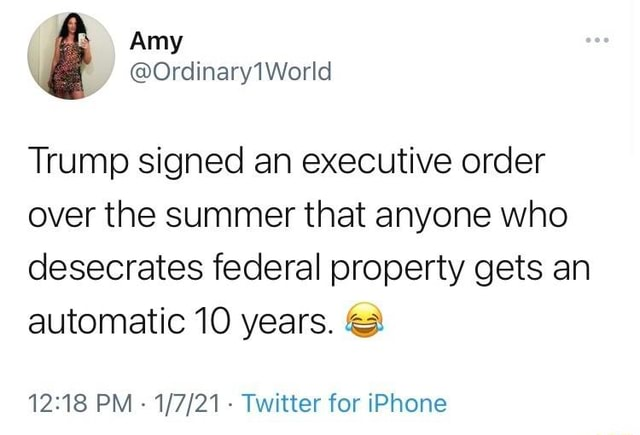 Trump signed an executive order over the summer that anyone who desecrates federal property gets an automatic 10 years. PM  Twitter for iPhone meme