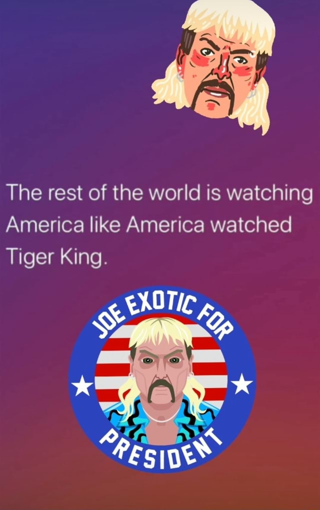 The rest of the world is watching America like America watched Tiger King. Yo meme