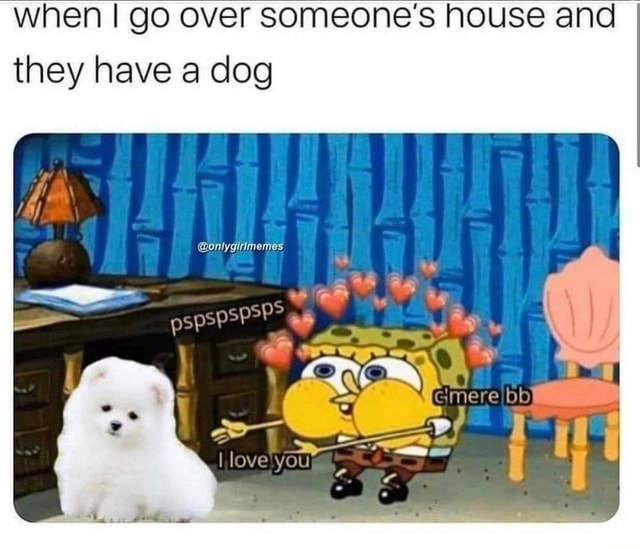 When go over someone's house and I they have a dog onlygitimemes mere love