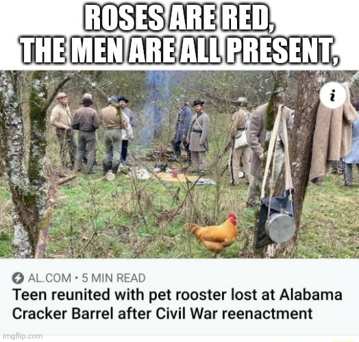 I THE ARE ALL 5 MIN READ Teen reunited with pet rooster lost at Alabama Cracker Barrel after Civil War reenactment memes