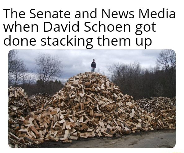The Senate and News Media when David Schoen got done stacking them up memes