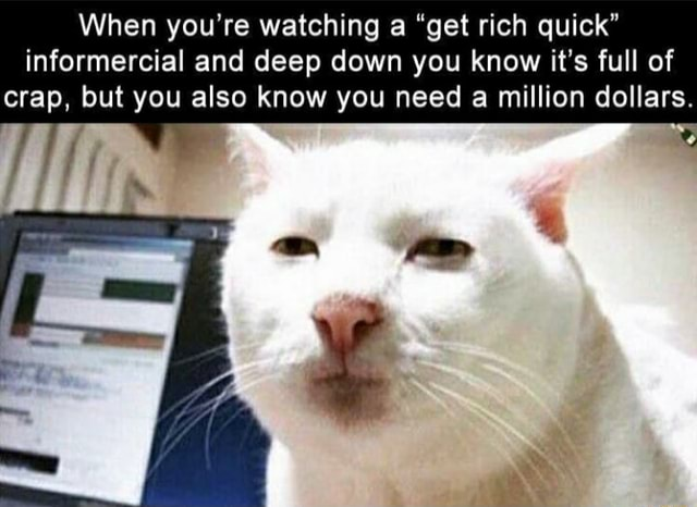 When you're watching a get rich quick informercial and deep down you know it's full of crap, but you also know you need a million dollars memes