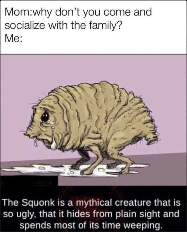 Do not you come and socialize with the family Me The Squonk is a mythical creature that is so ugly, that it hides from plain sight and spends most of its time weeping memes