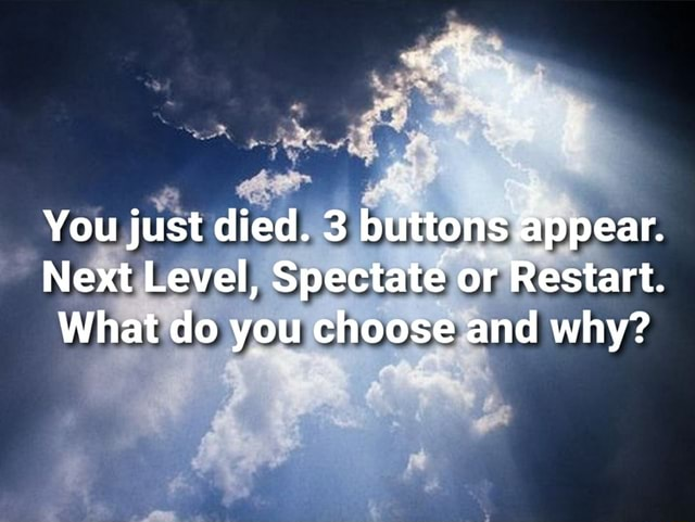 You just died. buttons appear. Next Level, Spectate or Restart. What do you choose and why meme