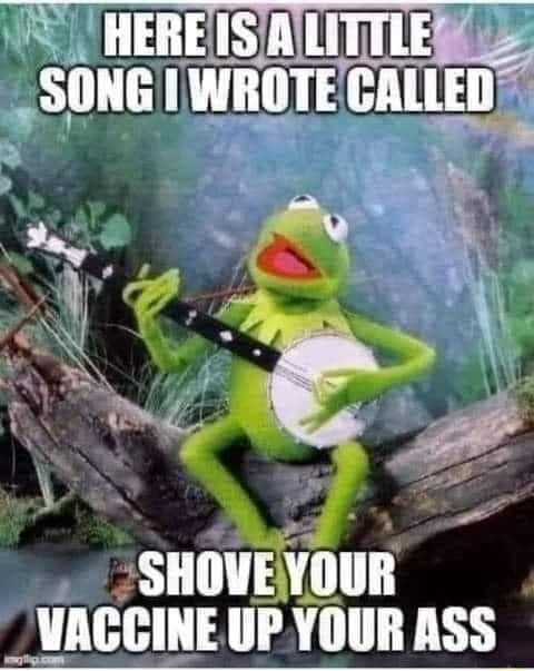 AEREISSLTTLE SONG WROTE CALLER SHOVE YOUR VACCINE UP YOUR ASS meme