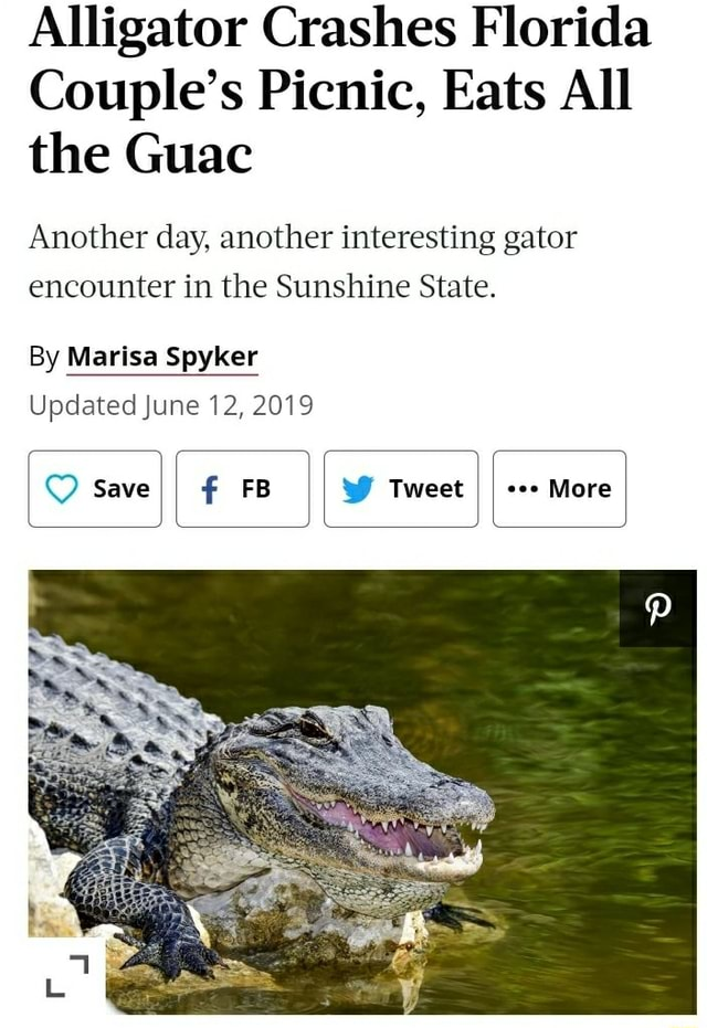 Alligator Crashes Florida Couple's Picnic, Eats All the Guac Another day, another interesting gator encounter in the Sunshine State. By Marisa Spyker Updated June 12, 2019 Save FB Tweet coo More memes