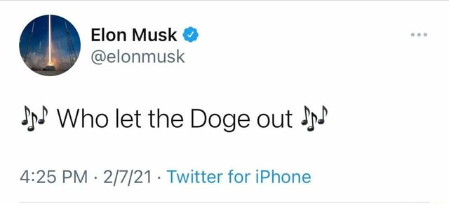 Elon Musk elonmusk Who let the Doge out PM Twitter for iPhone memes