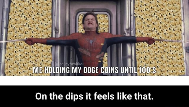 ME HOLDING MY DOGE COINS UNTIL 100 $ On the dips it feels like that. On the dips it feels like that meme